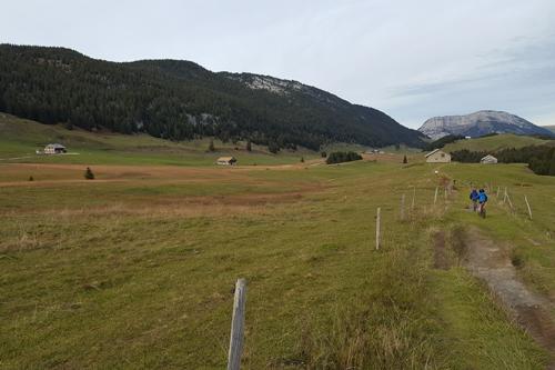 Alpage d'Annecy haute-savoie
